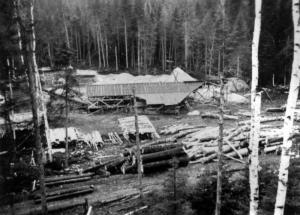 Portable Sawmill at the Baisley Depot