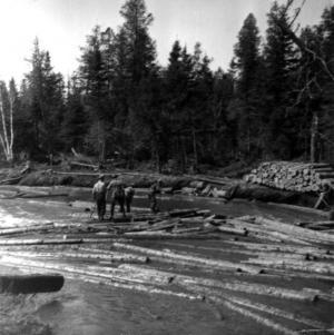 Draveurs sur une rivière