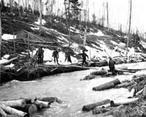 A  Log Bridge on a Stream