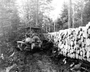 Tracteur poussant les branches