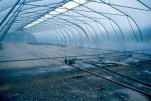 Water Jets in the Second Falls Nursery Greenhouse