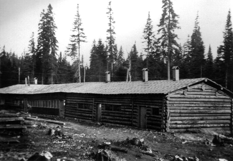 Camp forestier en bois rond for Camp en bois rond
