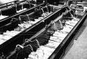 Les écorceuses de l'usine Fraser d'Edmundston