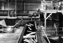 Plate-forme de bois écorcé  à l'usine Fraser d'Edmundston