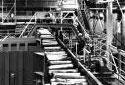 Triage sur la plate-forme de l'atelier de préparation du bois à l'usine Fraser d'Edmundston
