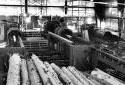 Écorceuse dans l'usine de sciage de la scierie Fraser de Kedgwick
