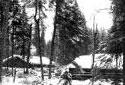 Camps de bois rond sous la neige