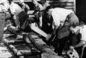 Bûcherons testant des scies à chaîne