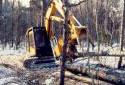 Abatteuse-ébrancheuse  déposant des troncs d'arbres