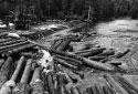 Landing for 16-Foot Logs on Little Tobique River