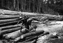 Drivers Releasing Logs