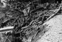 Crawler-Mounted Bulldozers in the Kedgwick River