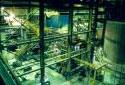 Préparation de l'écorce pour fournir de l'énergie à l'usine Fraser d'Edmundston