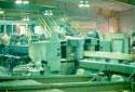 Dédosseuse-coupeuse dans l'usine de sciage Fraser de Plaster Rock