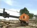 Ébrancher des arbres