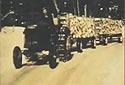 Piles de bois prêt pour le transport