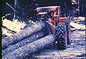 Mesurage du diamètre pour calculer le volume de bois coupé